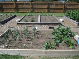 Garden Bed 3